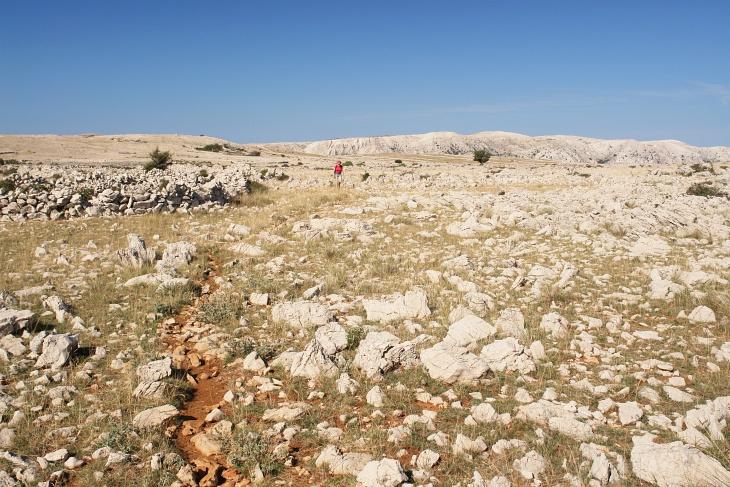 Ab dem Hlam verlassen wir die markierten Wege und schreiten nach Belieben Richtung Nordosten über das weite Plateau. Immer wieder treffen wir aber auf Steigspuren, die vermutlich ...