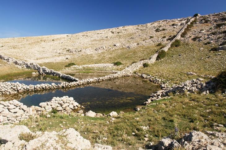 Die Voraussetzung dass die Schafe hier überhaupt existieren können sind die gelegentlichen Wasserstellen, wie hier die Lokva Diviska. Rechts der höchste Punkt - Diviska genannt - ist das Ende der Wanderroute 19 und mit 471 Meter heute unser höchster Punkt.