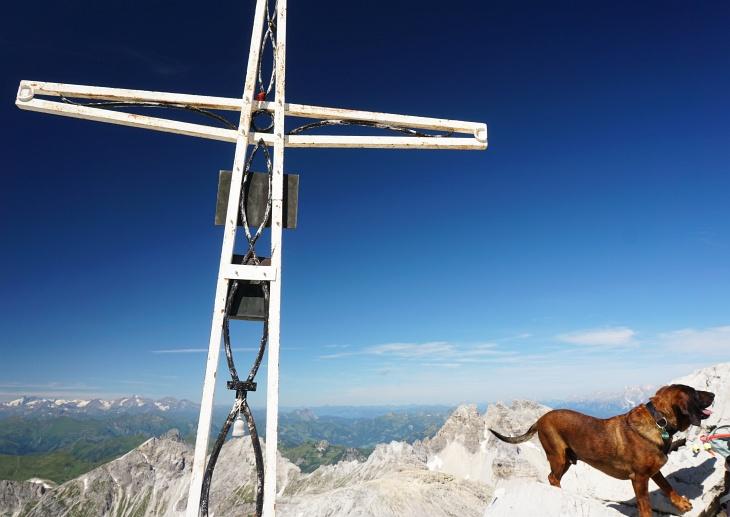 """Auch """"Herr Hund"""" hat es bis zum Gipfelkreuz geschafft. Einige Kinder, manche kam über 10 Jahre, zählten heute ebenfalls zu den Gipfelaspiranten."""