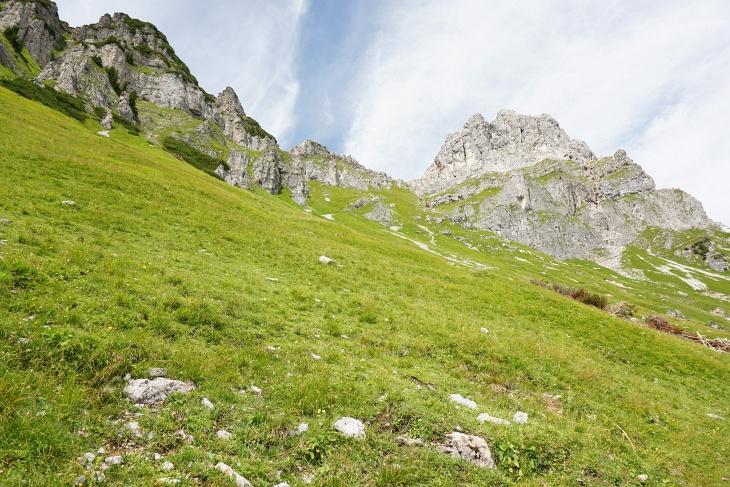 Über mittelsteile Wiesen gelange ich hier, einer flüchtenden Kreuzotter ausweichend, hinunter auf den markierten Austriaweg ...