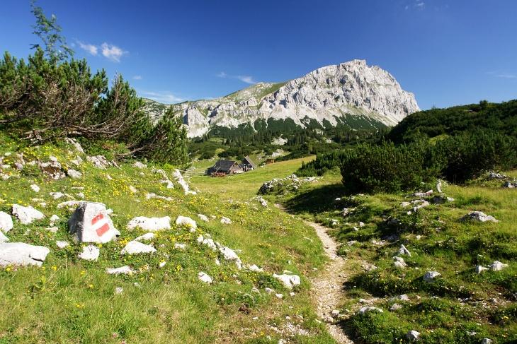 Über die Pfaffingalm auf den Brandstein war eine meiner schönsten Toruren im Hochschwabgebirge.