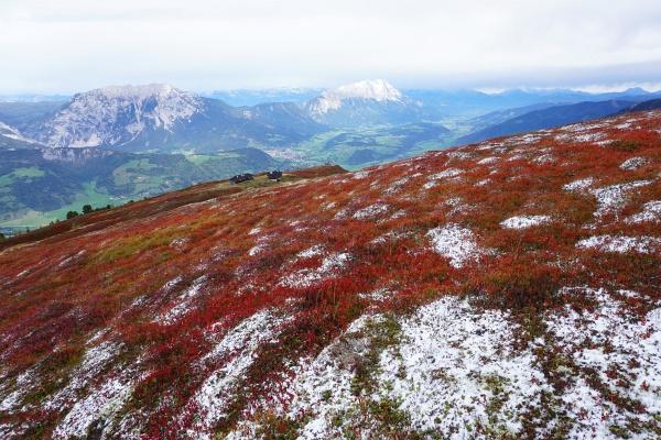 Rot ist unterhalb der Schneegrenze heute die dominierende Farbe