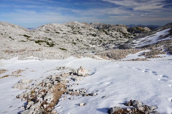 Schneefelder zwischen Schwaigbrunn und Traglhals
