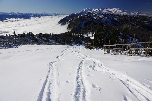 Neben Schneeschuhspuren und eltichen Wanderer-Spuren waren auf der ehemaligen Skipiste am Stoderzinken auch bereits Schispuren vorhanden. Mehr als 200 Höhenmeter gibt die Schneehöhe aber noch nicht her.