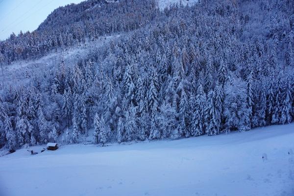 Winterlich präsentiert sich der Wald auch in Talnähe beim Ausgangspunkt meiner Tour beim Abenteuerpark-Parkplatz.