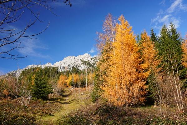 Oberhalb von Gröbming gibt es noch durchaus schöne Herbstfarben