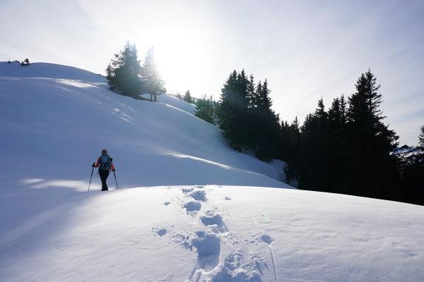 Die letzten Meter zum Gipfelkreuz am Kochofen. Für Schneeschuhe liegt auf jeden Fall schon ausreichend Schnee - sogar eine Schispur war schon vorhanden.