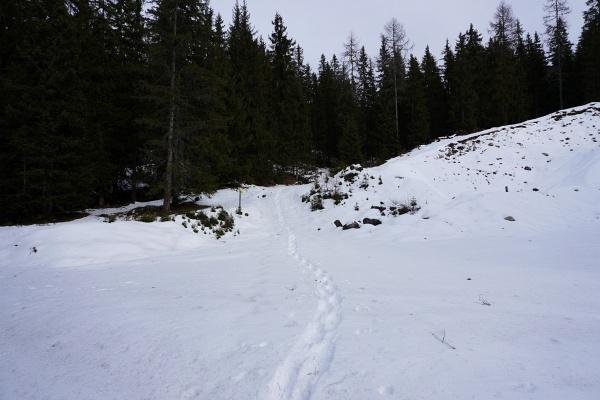 Von der Viehbergalm bis zum Hochmuehleck durfte dann ich meine Schneeschuhspuren in den jungfräulichen Schnee setzen.