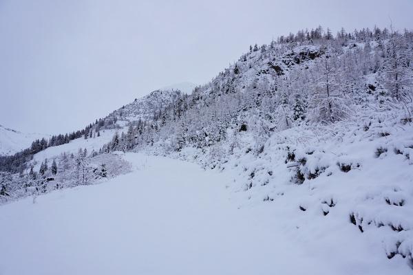 Einsamer Aufstieg über die Forststraßen zur Unteren Galsterbergalm