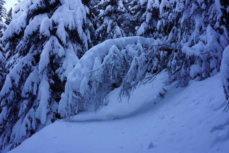 ... und man betritt ein herrliches Winter-Wonderland.
