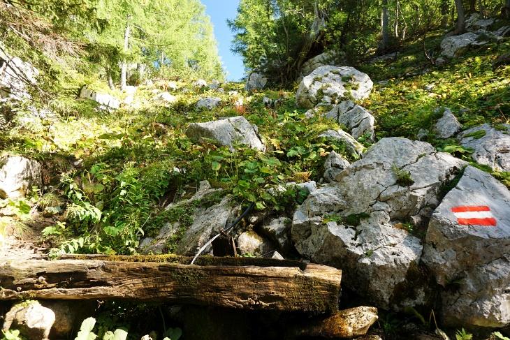 ... zum Gamsbrunnen mit seinem erfrischendem Wasser.