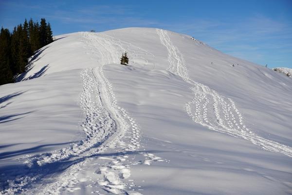 Nach einer kurzen Abfahrt in den Latterfußsattel geht´s auf Gipfel Nummer 2: Roßfeld