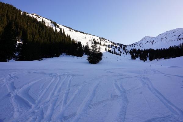 Nach dem gestrigen tollen Pulverschnee am Bärneck erhoffte ich mir heute ähnlich gute Schneeverhältnisse. Allerdings ist der untere Tourenabschnitt schon arg zerfahren. Verlockenden lockeren Schnee gibt es erst ab der Horningalm.