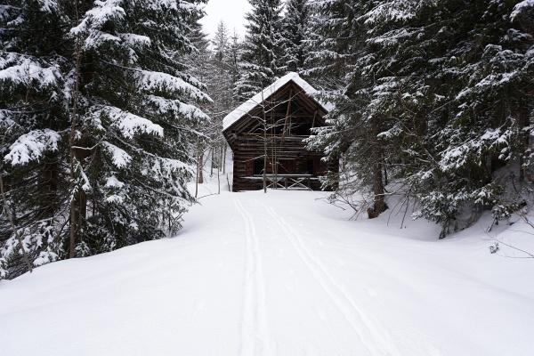 Vom Kochalmbauer folgen wir 2 frischen Aufstiegsspuren auf der Forststraße, die uns bei dieser Hütte aber fast in die Irre geführt hätten. Denn wir mussten weiter Richtung Westen zur Teltschenalm spuren.