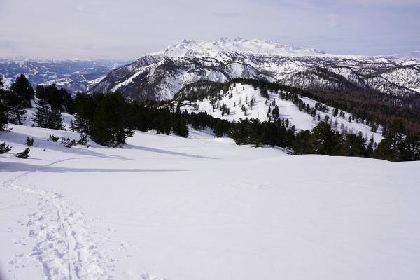 Anstollen war oberhalb der Waldgrenze ein Thema. Der warme Föhn sorgte für eine feuchte Schneedecke.