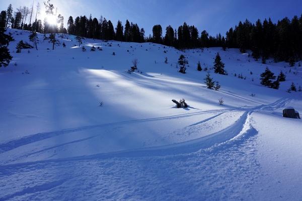 Nachdem ich mich bei meiner letzten Skitour am 29.02.2020 auf den Stoderzinken doch etwas schinden musste (700 Höhenmeter Spurarbeit im Aufstieg mit teils mühsamen Anstollen und auch Spurarbeit in den Flachstücken bei der Abfahrt), wurden wir heute mit tollen Pulverschneeverhältnissen belohnt.