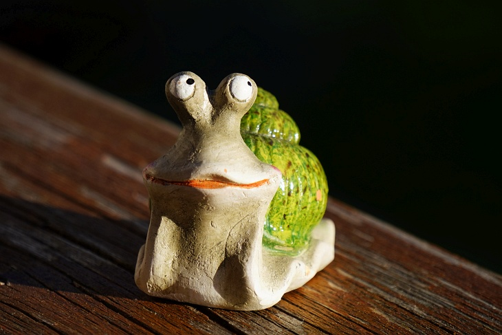 Bei diesem Besucher, der das Nest nicht mehr aus den Augen lässt, bin ich mir noch nicht ganz sicher, ob Feind oder Freund :-)