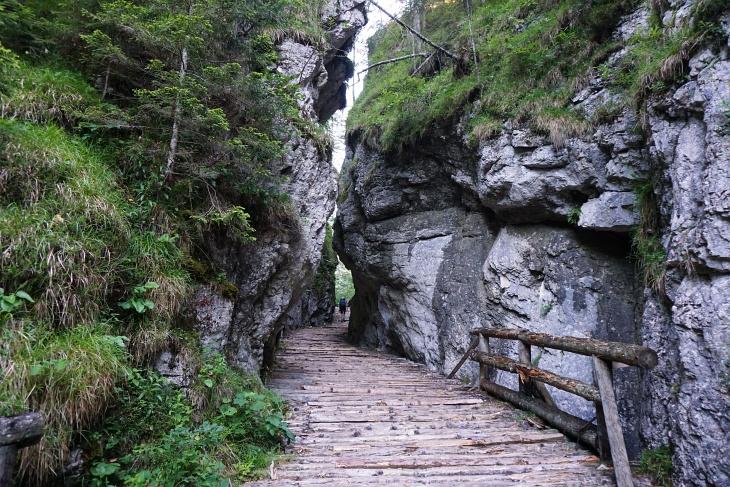2 Tage nach der Ruachlertour im Sengsengebirge wollte ich gleich wieder eine weglose Route versuchen. Aber dieses Mal war ich besser vorbreitet und merkte rasch, dass wir hier in der Fölzklamm den Steig übersehen und bereits zu weit der Markierung gefolgt waren.